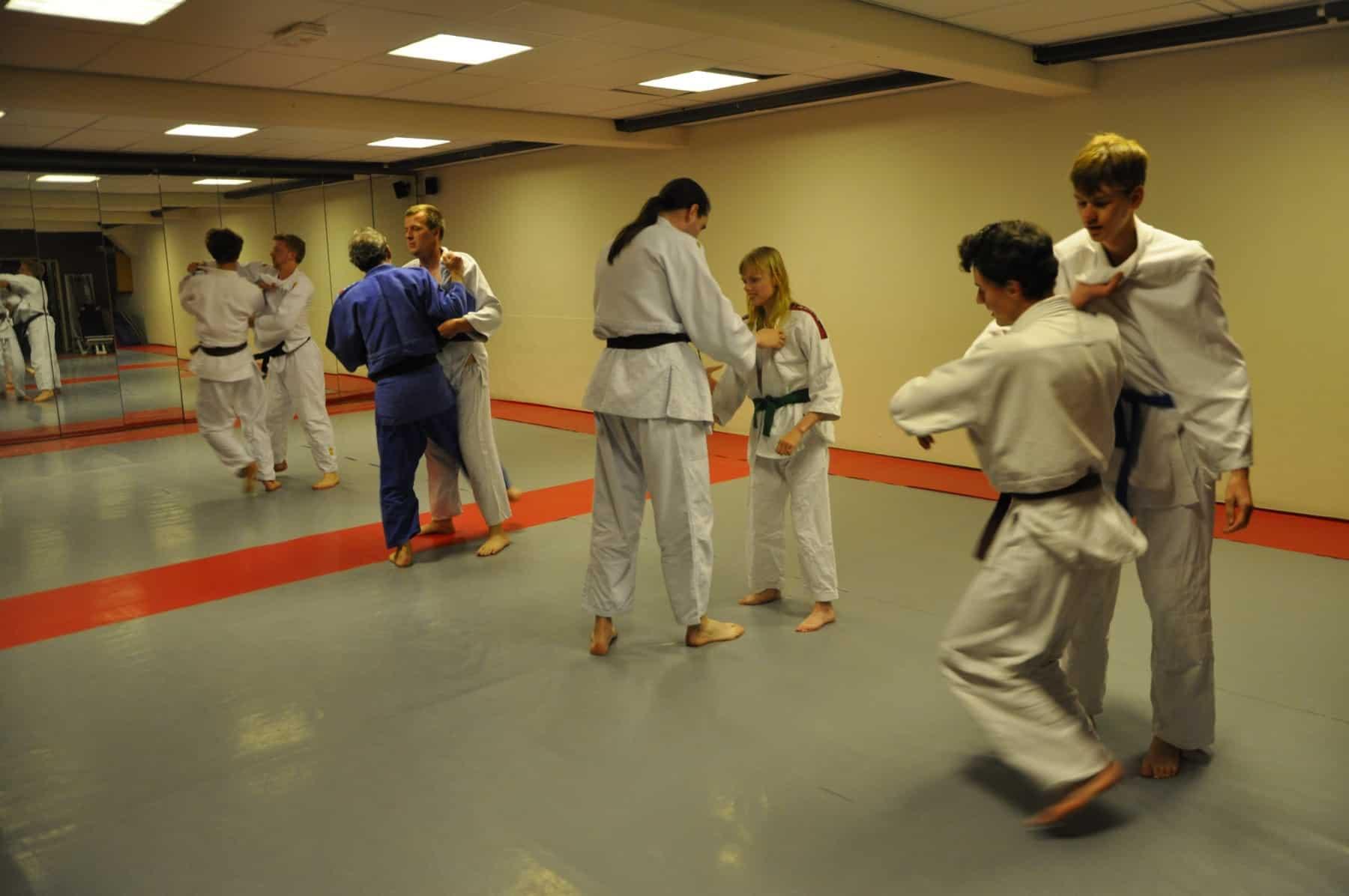 Judo Blaricum In Dorpshuis Blaercom